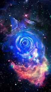 Zz - zz Rosette nebula stars MANDATO COLLECT.